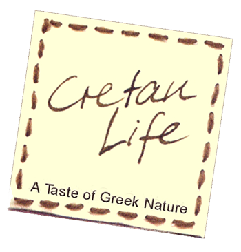 Cretan Life